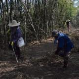 โครงการป้องกันและแก้ไขปัญหาหมอกควันและไฟป่า ประจำปี 2559