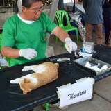 โครงการรณรงค์ป้องกันโรคพิษสุนัขบ้าและคุมกำเนิดประจำปี 2557