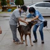 โครงการสัตว์ปลอดโรค คนปลอดภัยจากโรคพิษสุนัขบ้า